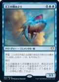 天上の餌あさり/Ethereal Forager (C20)
