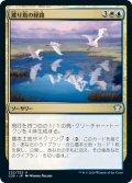 渡り鳥の経路/Migratory Route (C20)