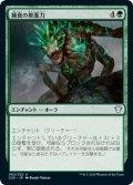 捕食の推進力/Predatory Impetus (C20)