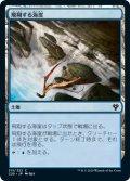 飛翔する海崖/Soaring Seacliff (C20)