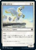 乗騎ペガサス/Cavalry Pegasus (C20)