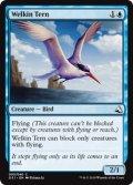 天空のアジサシ/Welkin Tern (GS1)