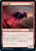雷光の猟犬/Bolt Hound (M21)