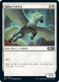 協約のペガサス/Concordia Pegasus (M21)