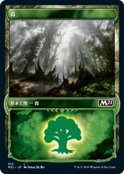 画像1: 森/Forest  (M21)【ショーケース・フレーム】《Foil》