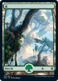 森/Forest 【Ver.1】 (ZNR)