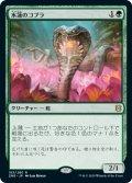 水蓮のコブラ/Lotus Cobra (ZNR)