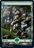 森/Forest 【Ver.2】 (ZNR)