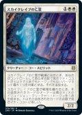 スカイクレイブの亡霊/Skyclave Apparition (ZNR)