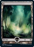 沼/Swamp 【Ver.1】 (ZNR)