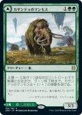 カザンドゥのマンモス/Kazandu Mammoth (ZNR)