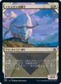 マキンディの雄牛/Makindi Ox (ZNR)【ショーケース・フレーム】