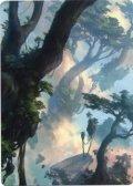 【イラストコレクション】森/Forest 【No.278】 (ZNR)