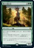 明けの林の主/Dawnglade Regent (CMR)