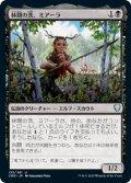 林間の茨、ミアーラ/Miara, Thorn of the Glade (CMR)