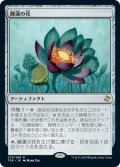 睡蓮の花/Lotus Bloom (TSR)