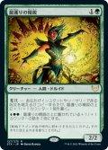 龍護りの精鋭/Dragonsguard Elite (STX)