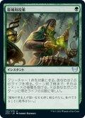 籠城用投薬/Fortifying Draught (STX)