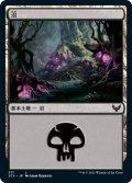 沼/Swamp 【Ver.2】 (STX)