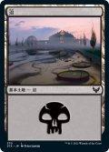 沼/Swamp 【Ver.1】 (STX)