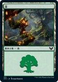 森/Forest 【Ver.2】 (STX)