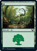 森/Forest 【Ver.1】 (STX)
