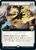 戦闘講習/Sparring Regimen (STX)【拡張アート版】