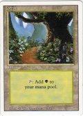 森/Forest【Ver.1】(3ED)