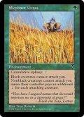 エレファント・グラス/Elephant Grass (VIS)