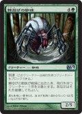 棘投げの蜘蛛/Stingerfling Spider (M12)