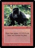 密林の猿人/Kird Ape (ARN)