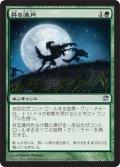 昇る満月/Full Moon's Rise (ISD)
