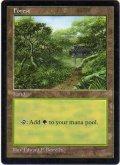 森/Forest (APAC Land 透明)