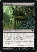 秘宝の腐敗/Relic Putrescence (SOM)