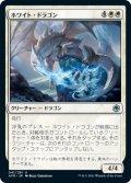 ホワイト・ドラゴン/White Dragon (AFR)