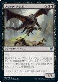 ブラック・ドラゴン/Black Dragon (AFR)