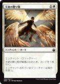天使の贈り物/Angelic Gift (BBD)