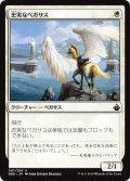 忠実なペガサス/Loyal Pegasus (BBD)
