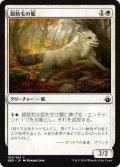 銀筋毛の狐/Silverchase Fox (BBD)