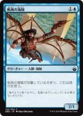 帆凧の海賊/Kitesail Corsair (BBD)