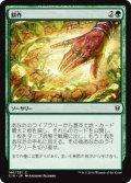 耕作/Cultivate (C16)