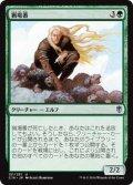 猟場番/Gamekeeper (C16)