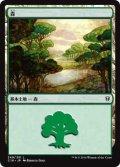 森/Forest【Illust:Rebecca Guay】 (C16)