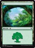 森/Forest【Illust:Mark Poole】 (C16)