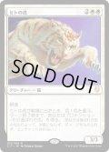 セトの虎/Seht's Tiger (C17)