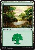 森/Forest【Ver.1】(C17)