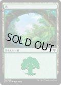 森/Forest【Ver.2】(C17)