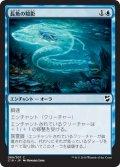 長魚の陰影/Eel Umbra (C18)