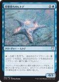 印章持ちのヒトデ/Sigiled Starfish (C18)