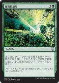 爆発的植生/Explosive Vegetation (C18)